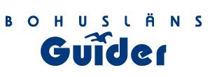logo_300x110pix